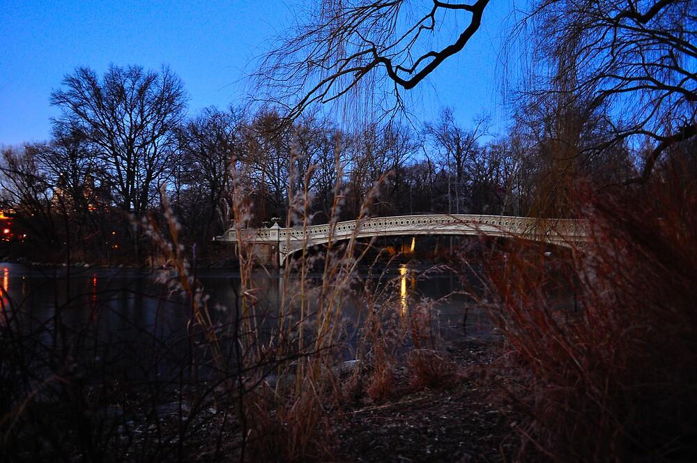 Central Park Bridge at Dusk by emcreates