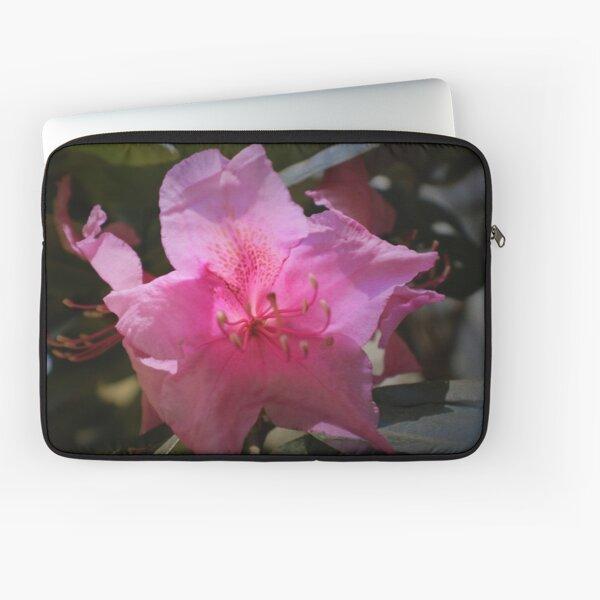 Rhody blossom Laptop Sleeve
