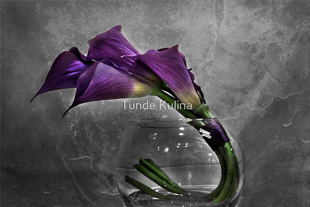 Lila by Tunde Kulina