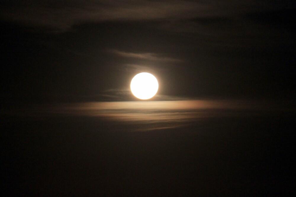 Full Moon Rising by Jenelle  Irvine