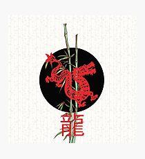 Dragon (chinese zodiac) Photographic Print