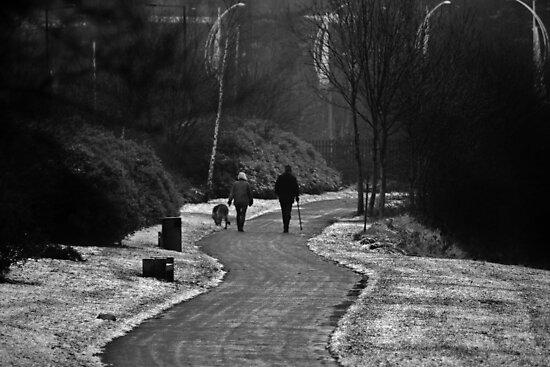 Walking the Dog by Ladymoose