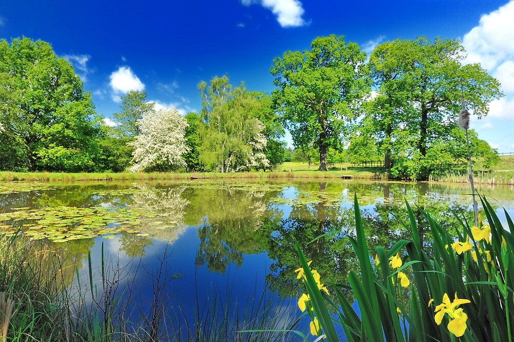 Derbyshire Landscapes by Moments In Time Photography