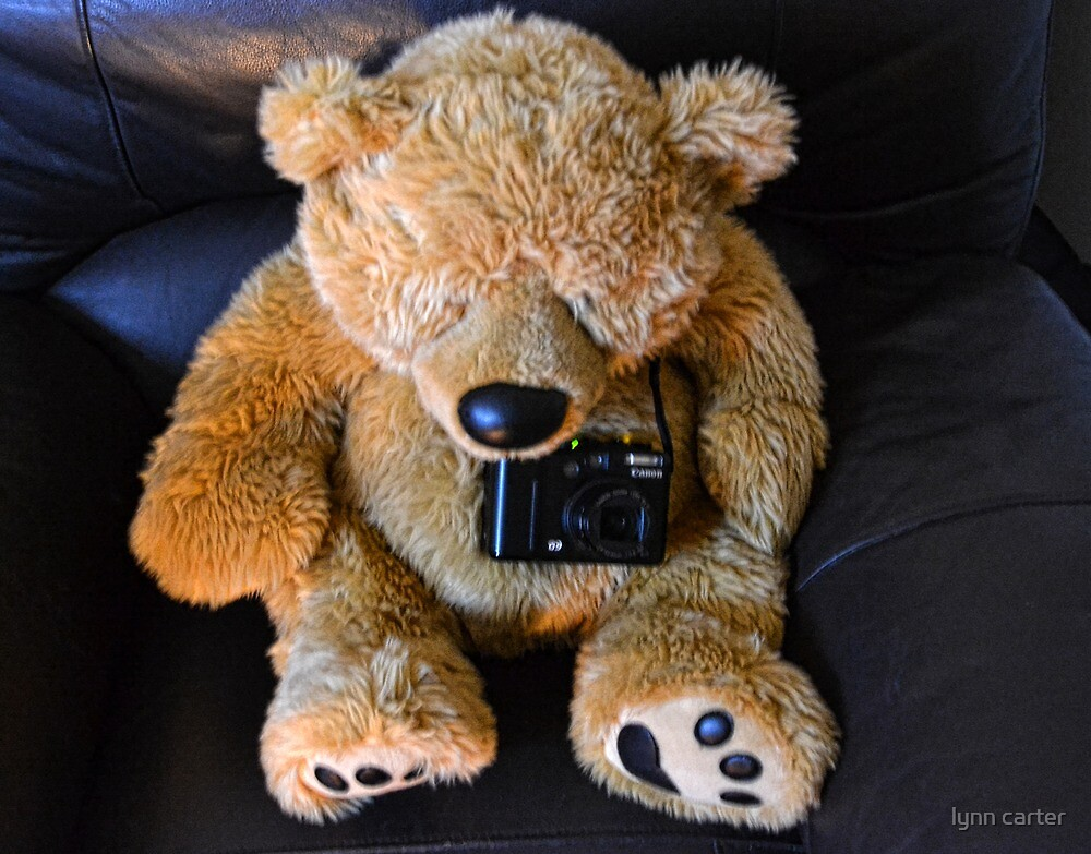 Ted The Photographer by lynn carter