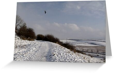 Snowscape by Carol Bleasdale