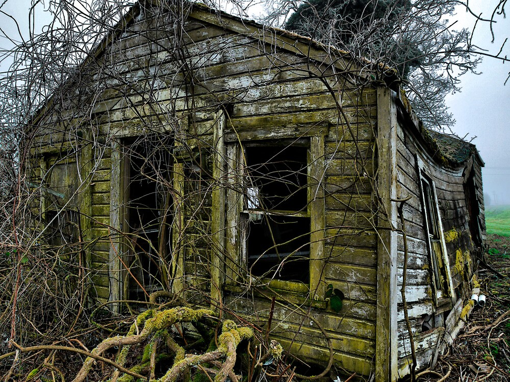Bummer by Charles & Patricia   Harkins ~ Picture Oregon