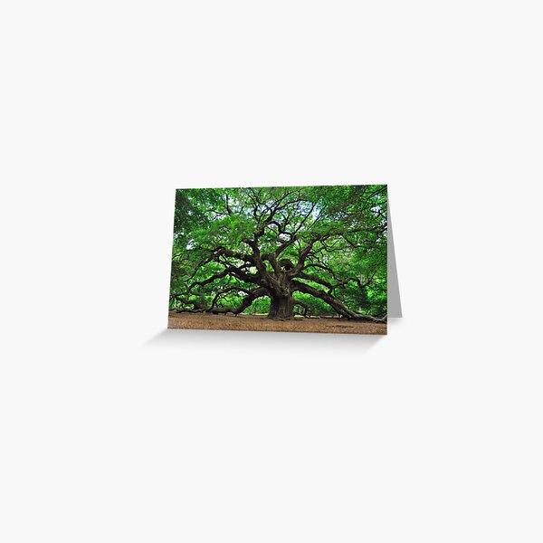 Angel Oak Greeting Card