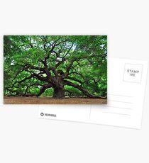 Angel Oak Postcards