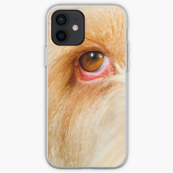 Eye Spy Spinone iPhone Soft Case
