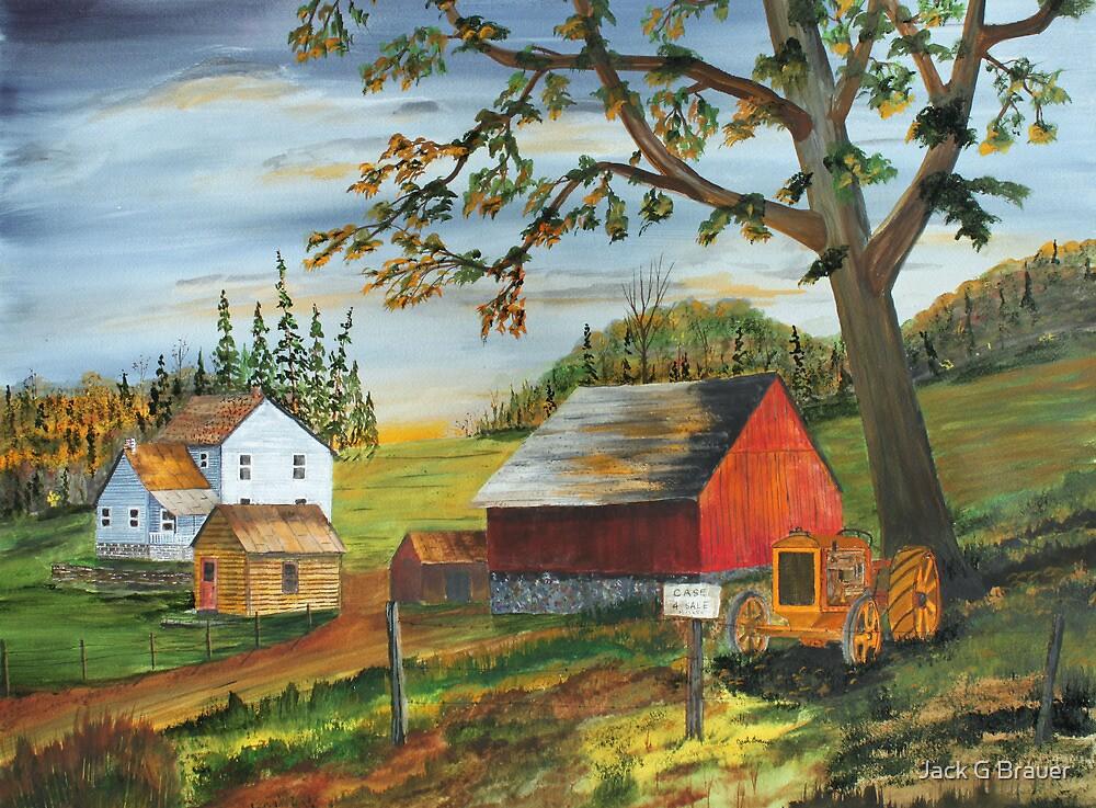 Hillside Farm by Jack G Brauer
