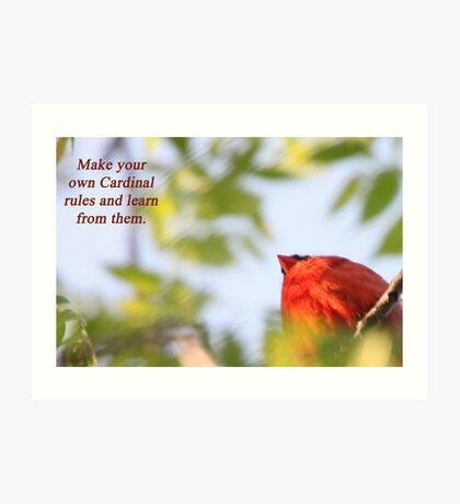 Make your own Cardinal rules and learn from them. Art Print