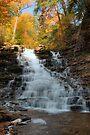 Fall Colors Crowning F. L. Ricketts Falls by Gene Walls
