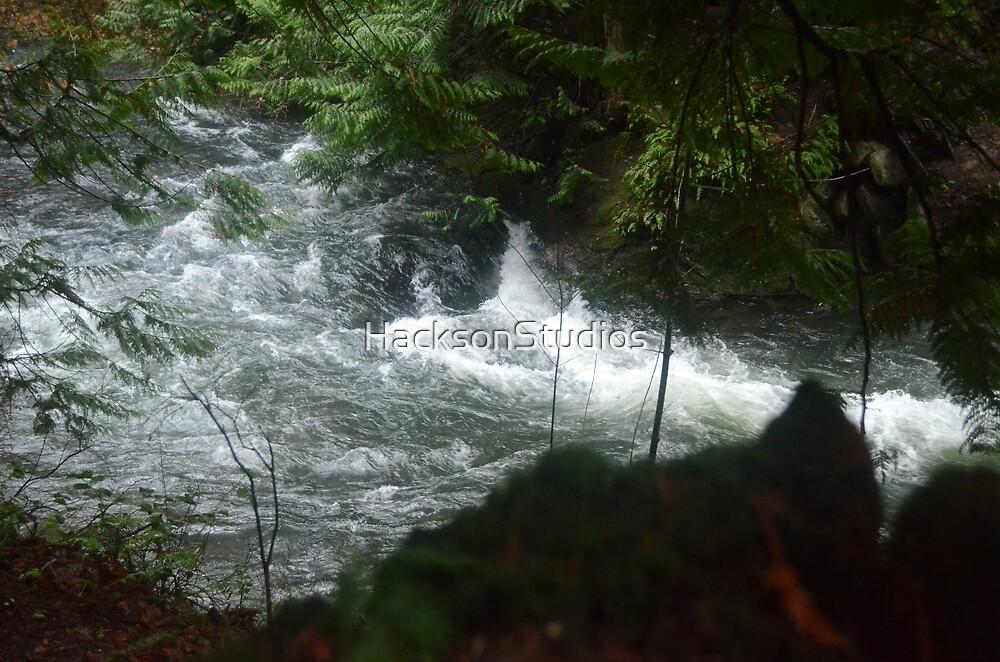 Going Downstream 2 by HacksonStudios