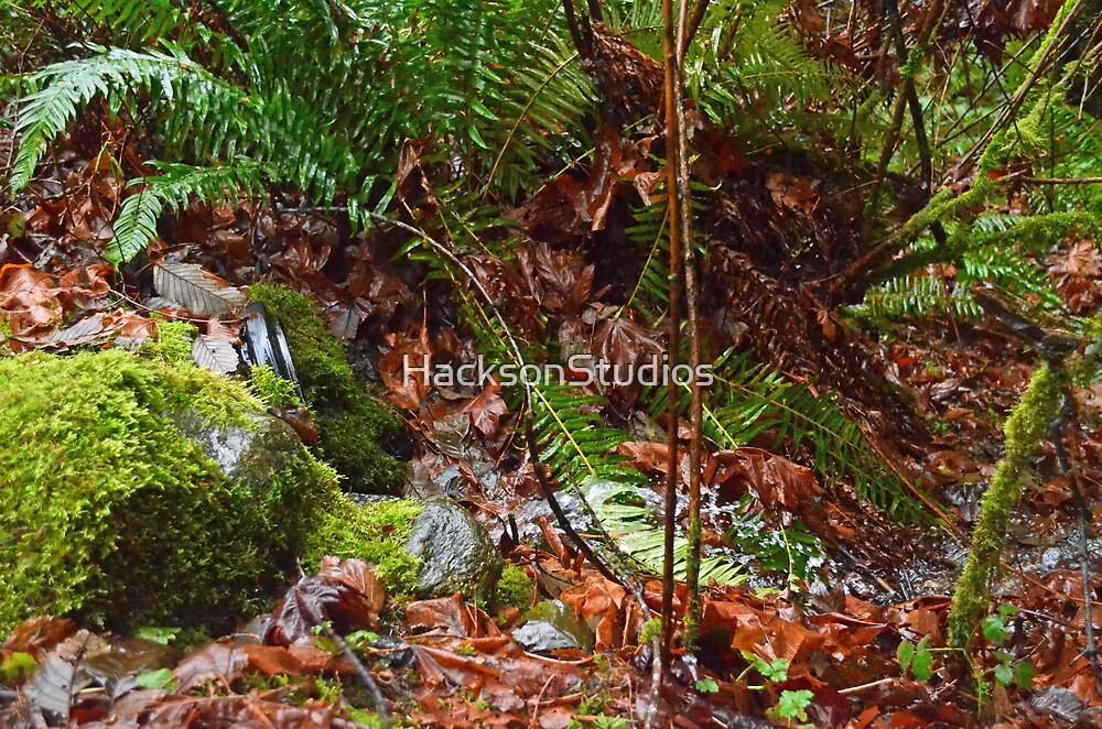 Autumn Leaves by HacksonStudios