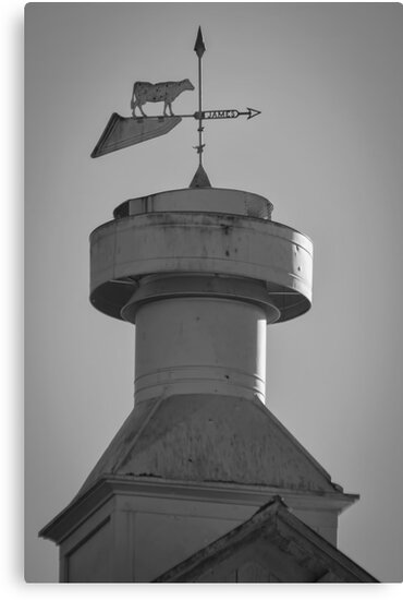 Wisconsin Cupola by Thomas Young