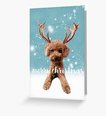 Merry Christmas Poodle Greeting Card