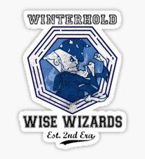 Winterhold Wizards Sticker