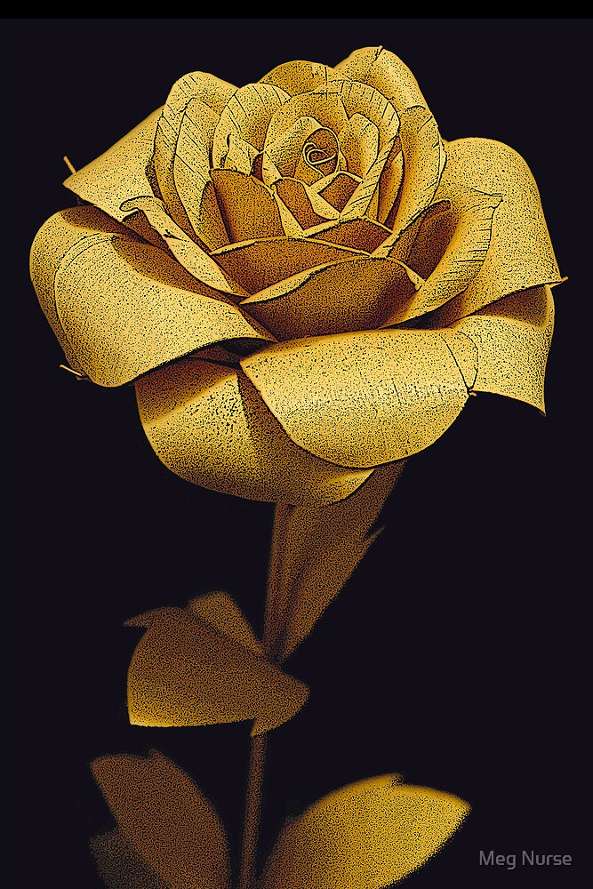 Rustic Rose by megsphotos