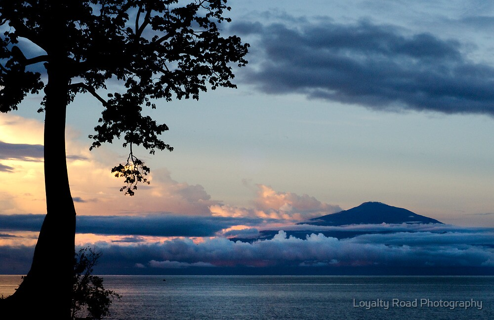 Mount Cameroon by A. Duncan