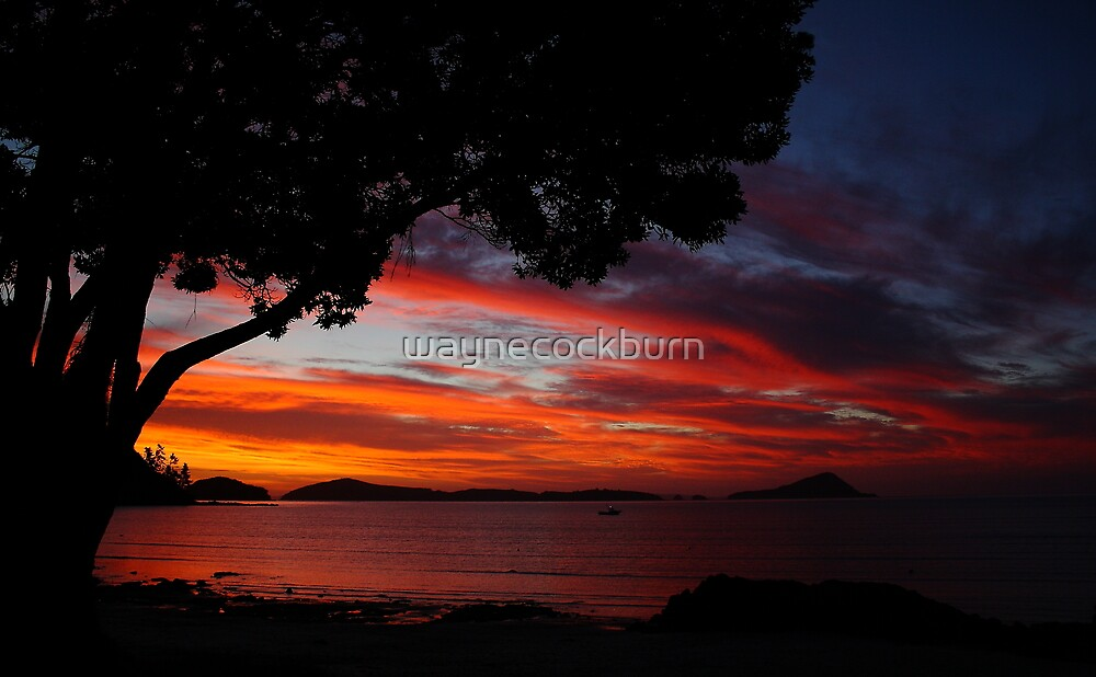 Sunset - New Zealand by waynecockburn