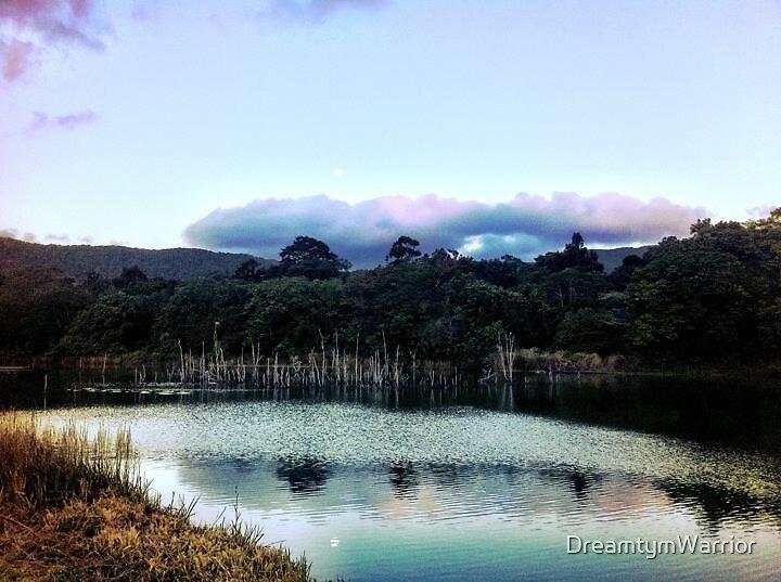 Rainforest Lake by DreamtymWarrior