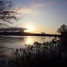 Tring Reservoir Sunset by Goldendays