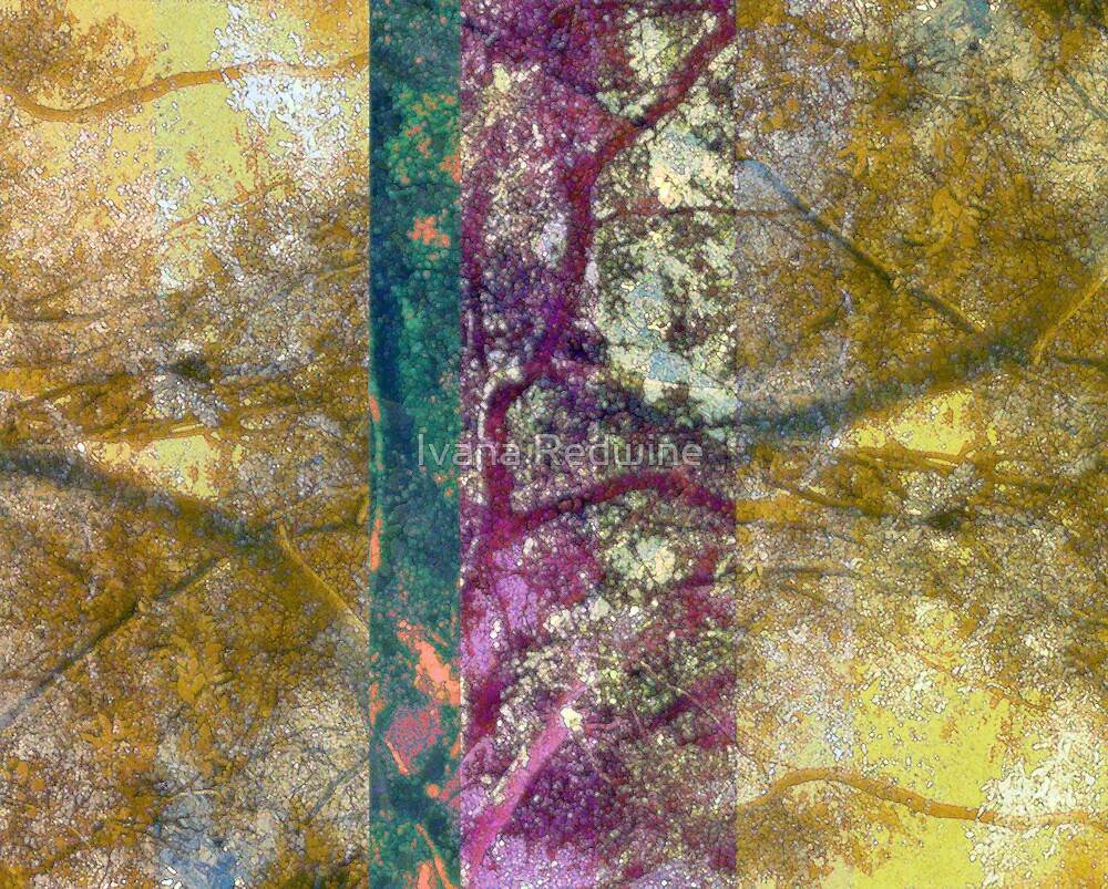 Abstracted Trees and Branches With Fauve Influenced Color by Ivana Redwine