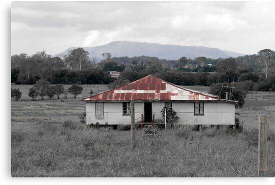Abandoned Farmhouse by Jenelle  Irvine