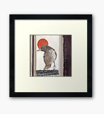 Red Sun Ball Framed Print