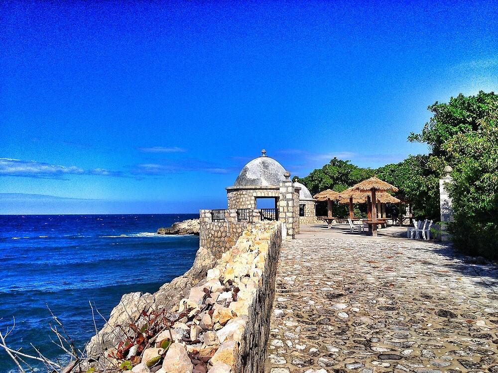 Labadee, Haiti by fauselr