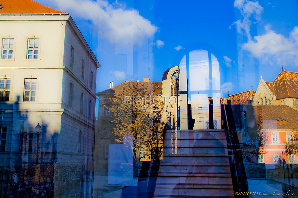 Reflection by BIPHOTO