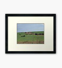 Rural Life Framed Print