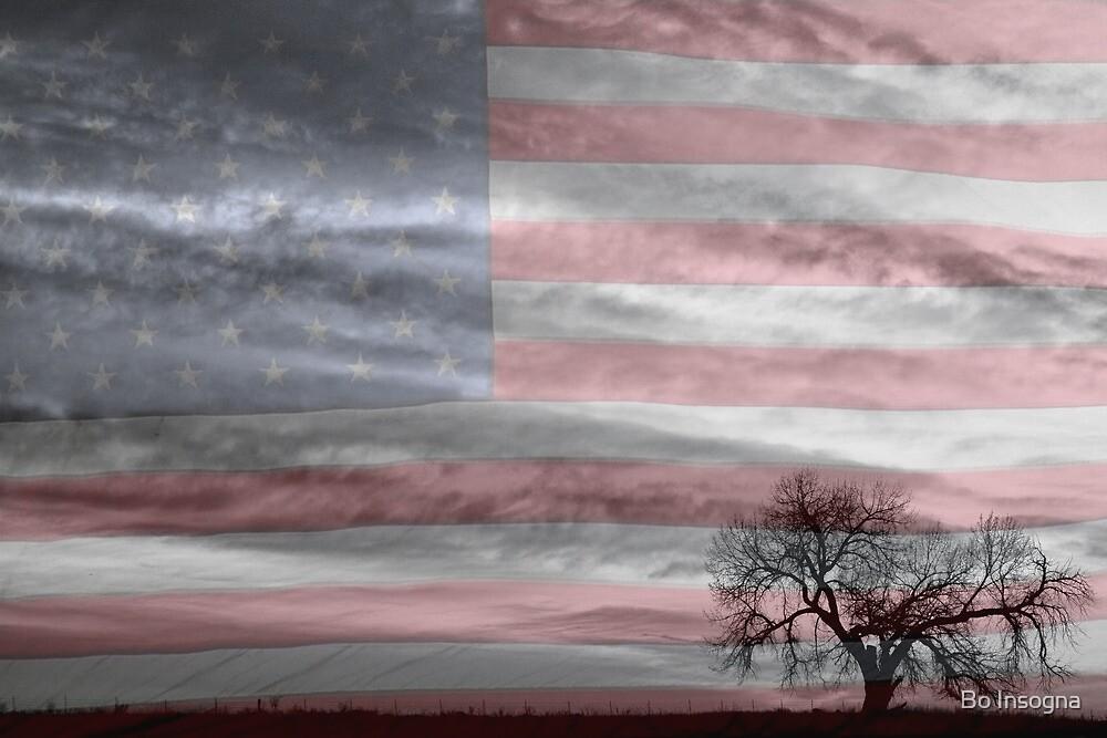 American Landscape by Bo Insogna
