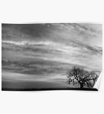 Morning Has Broken Like the First Gentle Breeze BW  Poster