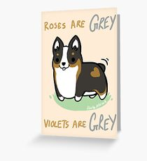 TRI Corgi Valentine -Roses are GREY- Greeting Card