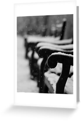 Benches in the snow (Eastbourne, 2013) by JJFA