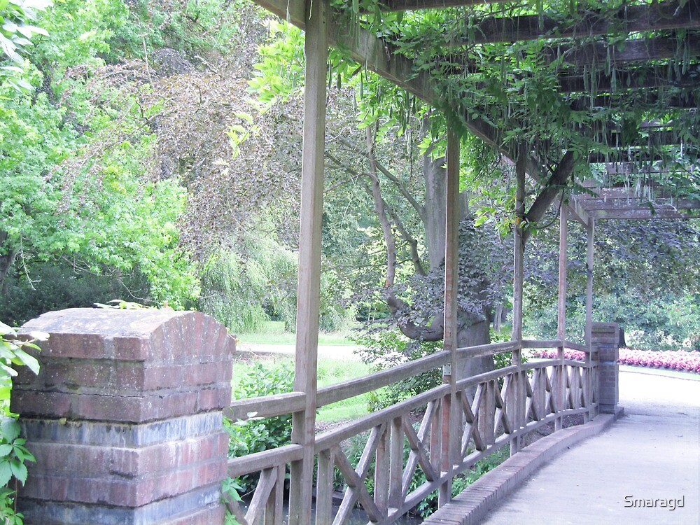 Bridge in the green by Smaragd