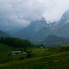 Austrian Rain by Robert C Richmond