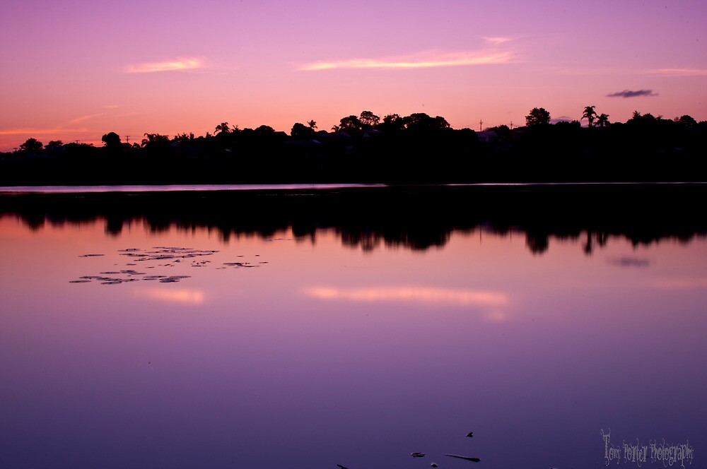 Purple Serenity by tonyporter