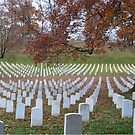 Arlington Cemetery by EmmaLeigh