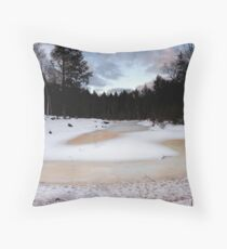 Nice Ice Throw Pillow