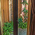A Door To A Secret Garden by Jane Neill-Hancock
