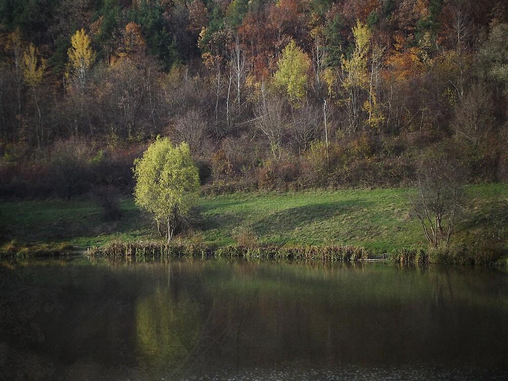 Little lake by dosagy