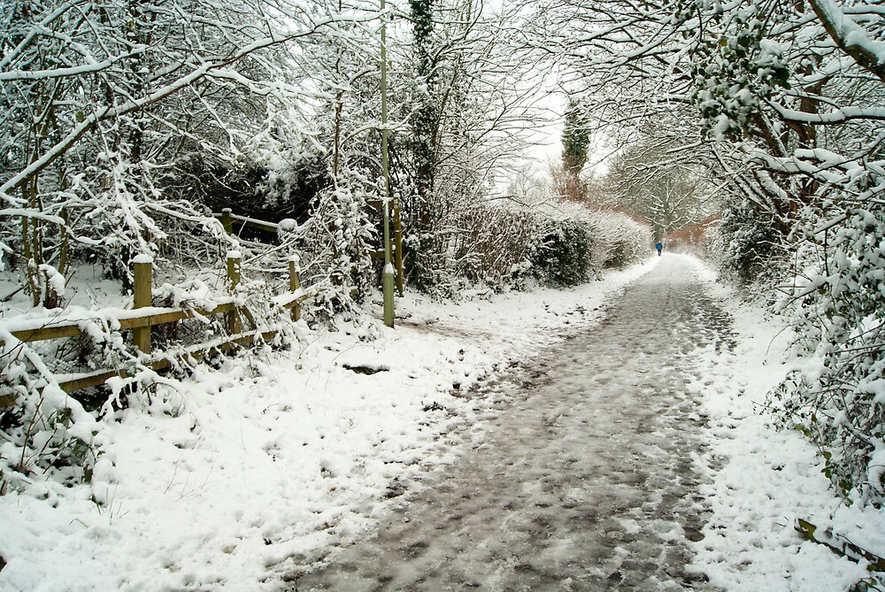 Wintry Walk by Paul Hutchinson