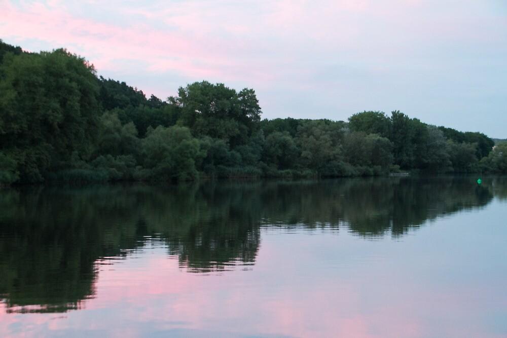 Rhine Reflections #2 by GW-FotoWerx