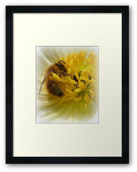 Pollenator by Goldendays