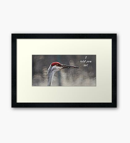 I told you so! Framed Print