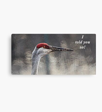 I told you so! Canvas Print