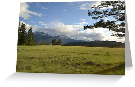 Mountains and the Meadow by emtakesphotos