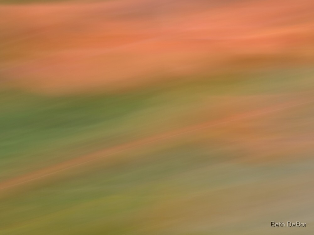 Begonias 2 by Beth DeBor